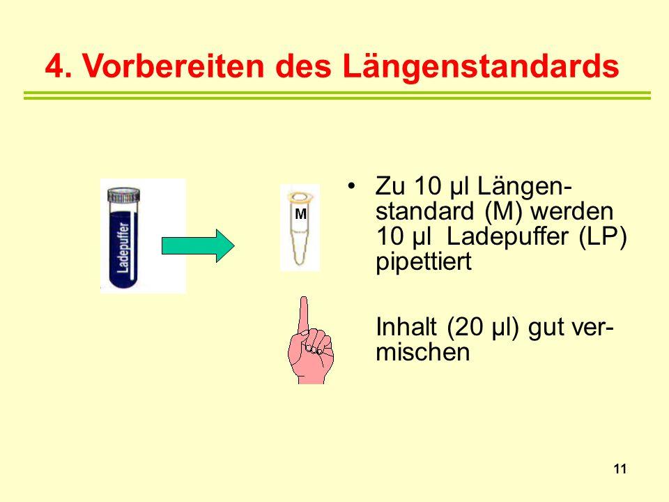 4. Vorbereiten des Längenstandards Zu 10 µl Längen- standard (M) werden 10 µl Ladepuffer (LP) pipettiert Inhalt (20 µl) gut ver- mischen 11 M