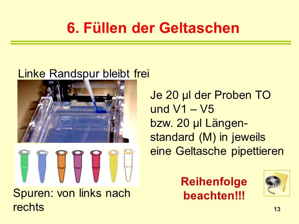 13 6. Füllen der Geltaschen Spuren: von links nach rechts Linke Randspur bleibt frei Reihenfolge beachten!!! Je 20 µl der Proben TO und V1 – V5 bzw. 2