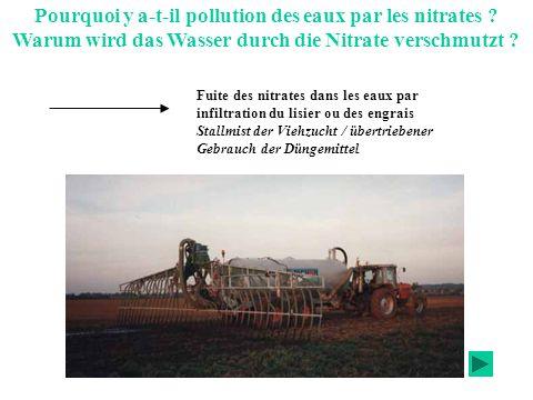Que sont les nitrates ? Was ist Nitrat ? N Un atome dazote Trois atomes doxygène Une charge négative Ion qui apporte aux végétaux lazote nécessaire à