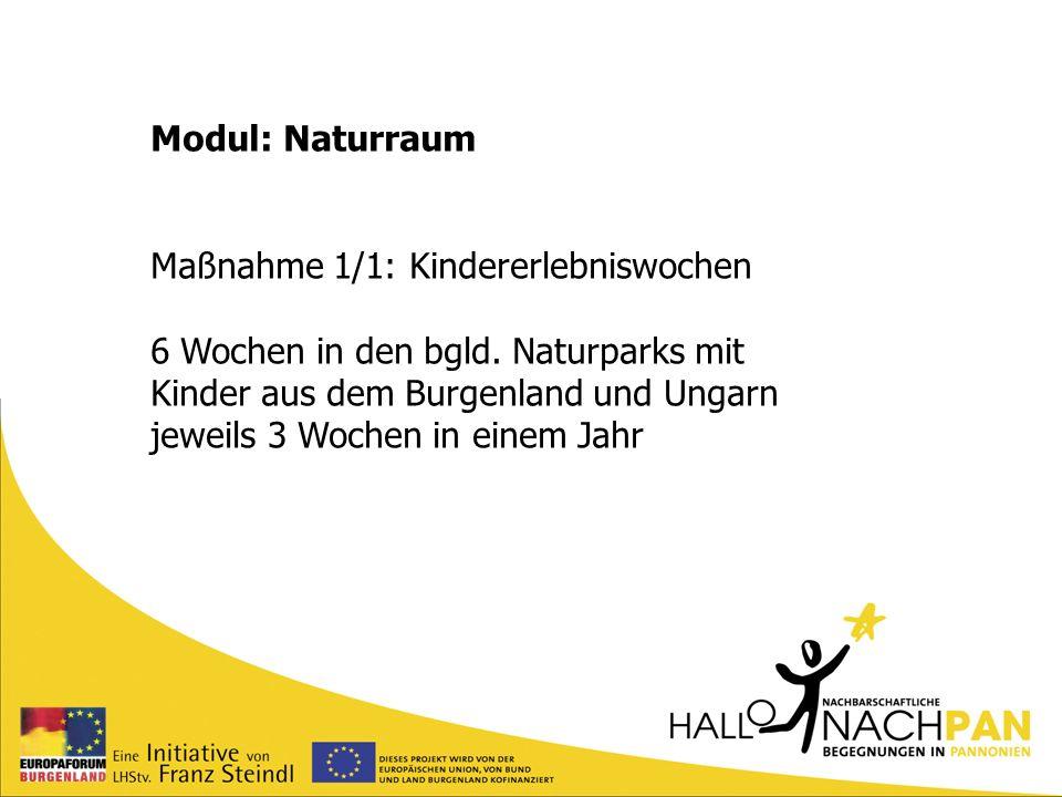 Modul: Naturraum Maßnahme 1/1: Kindererlebniswochen 6 Wochen in den bgld. Naturparks mit Kinder aus dem Burgenland und Ungarn jeweils 3 Wochen in eine