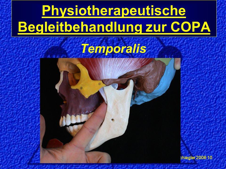 Schiegler 2006 10 Temporalis Physiotherapeutische Begleitbehandlung zur COPA
