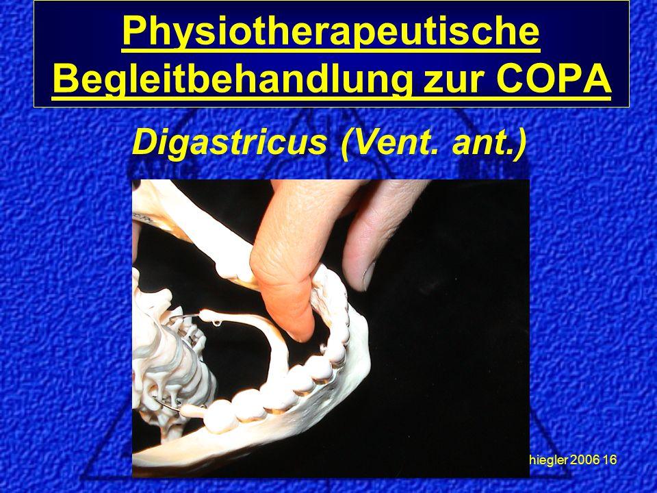Schiegler 2006 16 Physiotherapeutische Begleitbehandlung zur COPA Digastricus (Vent. ant.)