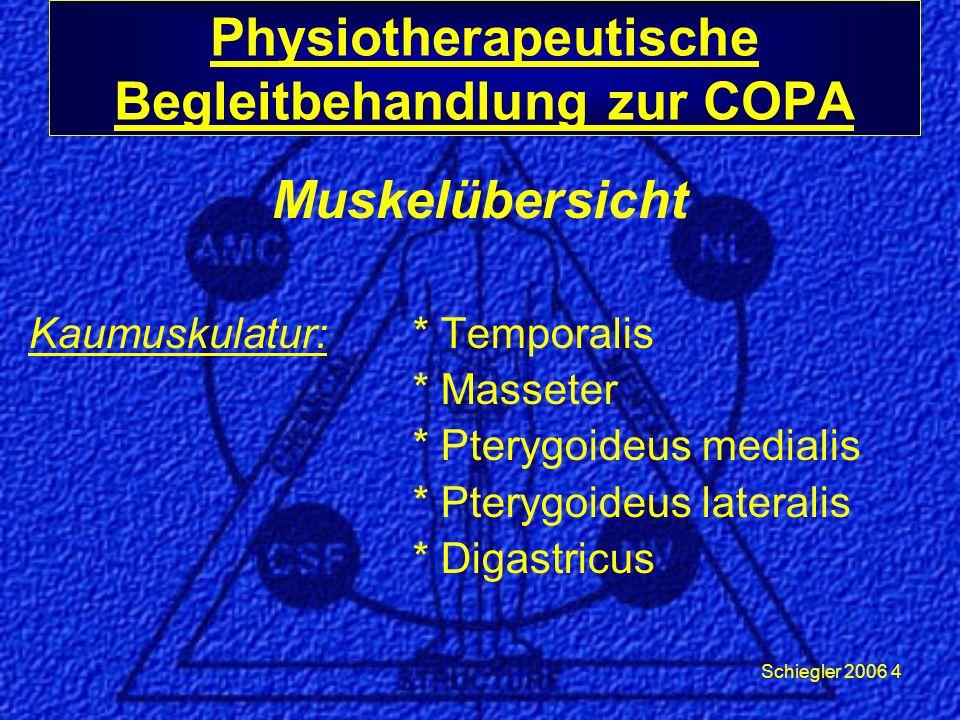 Schiegler 2006 15 Physiotherapeutische Begleitbehandlung zur COPA Digastricus Extraoral: Venter posterior: *Ausstreichen Intraoral: Venter anterior: *Zirkelungen