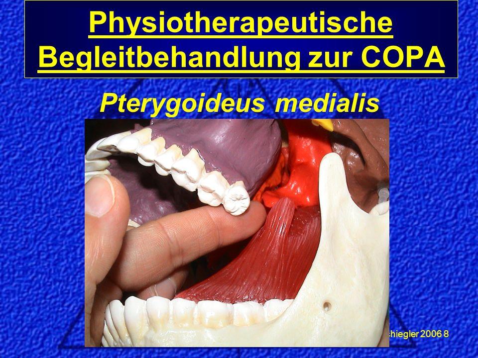 Schiegler 2006 8 Pterygoideus medialis Physiotherapeutische Begleitbehandlung zur COPA