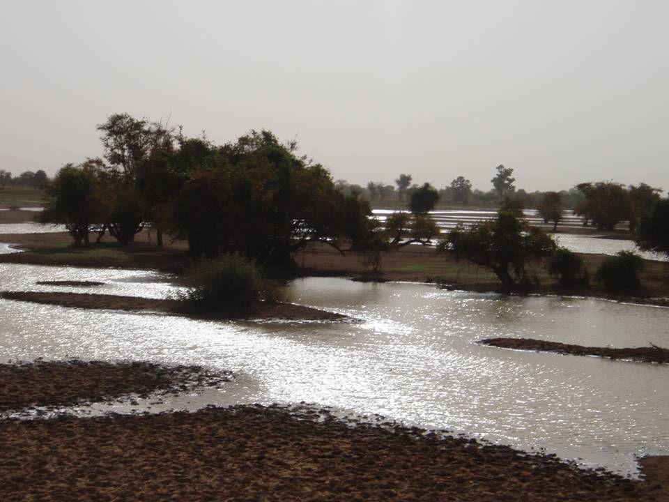 Burkina Faso Ouagadougou 13 730 258 Einwohner (ö : 8 334 325 E.) 274 200 km² (ö : 83 871 km²) bis 1960 frz.