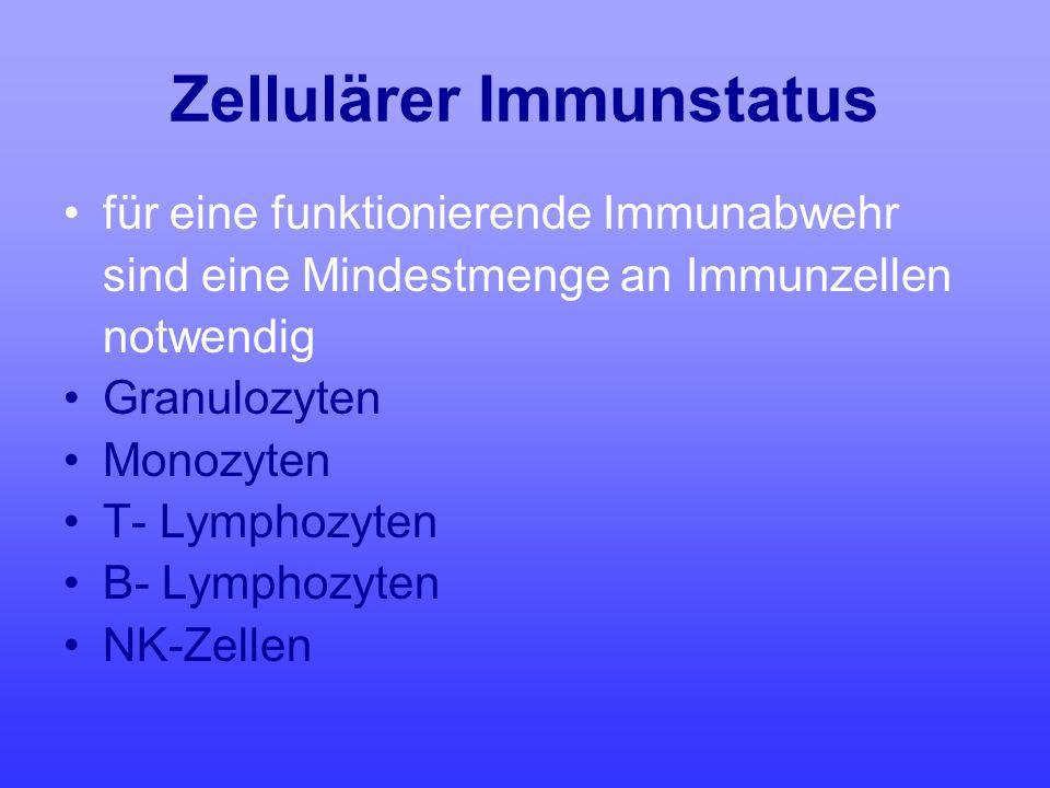 Zellulärer Immunstatus für eine funktionierende Immunabwehr sind eine Mindestmenge an Immunzellen notwendig Granulozyten Monozyten T- Lymphozyten B- L