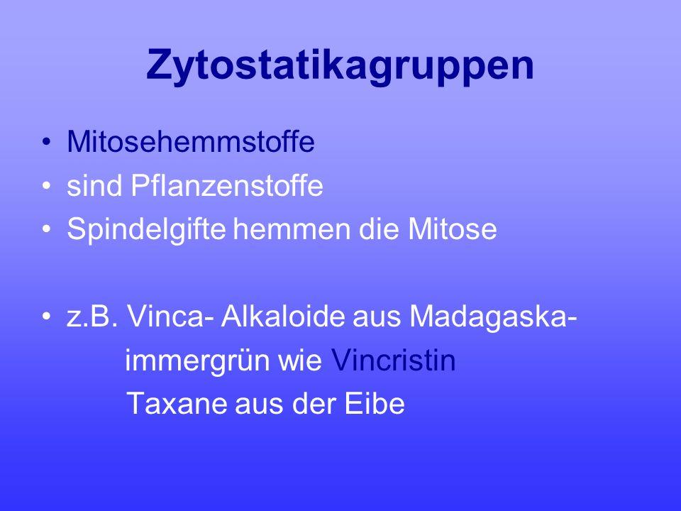 Zytostatikagruppen Mitosehemmstoffe sind Pflanzenstoffe Spindelgifte hemmen die Mitose z.B. Vinca- Alkaloide aus Madagaska- immergrün wie Vincristin T