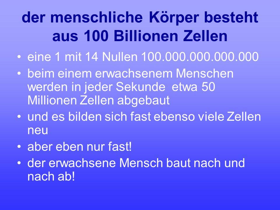 der menschliche Körper besteht aus 100 Billionen Zellen eine 1 mit 14 Nullen 100.000.000.000.000 beim einem erwachsenem Menschen werden in jeder Sekun