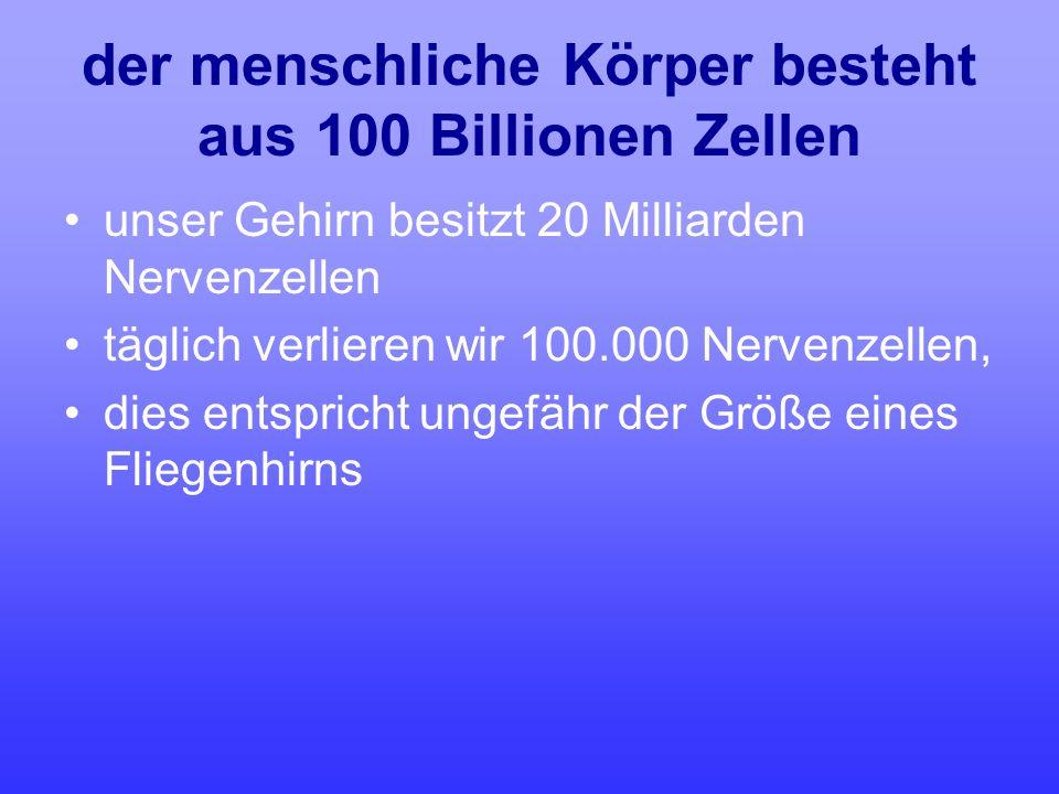 der menschliche Körper besteht aus 100 Billionen Zellen unser Gehirn besitzt 20 Milliarden Nervenzellen täglich verlieren wir 100.000 Nervenzellen, di