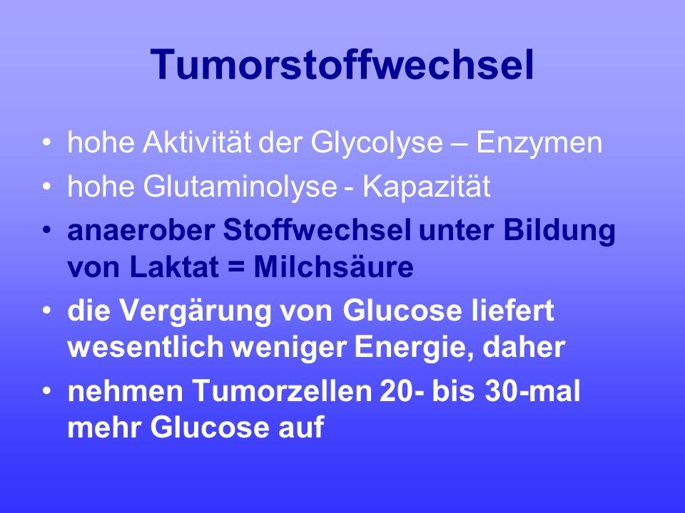 Tumorstoffwechsel hohe Aktivität der Glycolyse – Enzymen hohe Glutaminolyse - Kapazität anaerober Stoffwechsel unter Bildung von Laktat = Milchsäure d