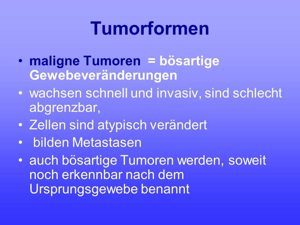 Tumorformen maligne Tumoren = bösartige Gewebeveränderungen wachsen schnell und invasiv, sind schlecht abgrenzbar, Zellen sind atypisch verändert bild