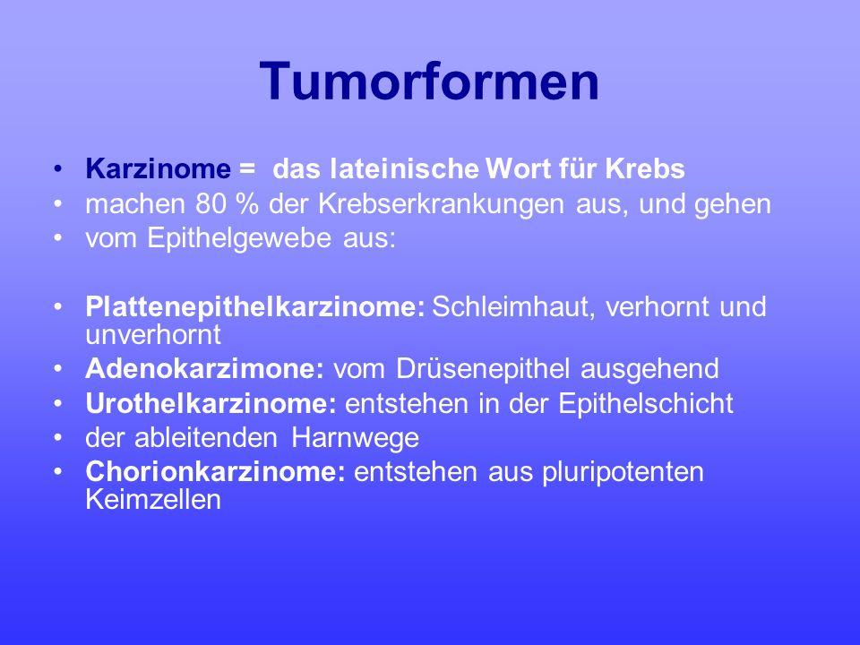 Tumorformen Karzinome = das lateinische Wort für Krebs machen 80 % der Krebserkrankungen aus, und gehen vom Epithelgewebe aus: Plattenepithelkarzinome