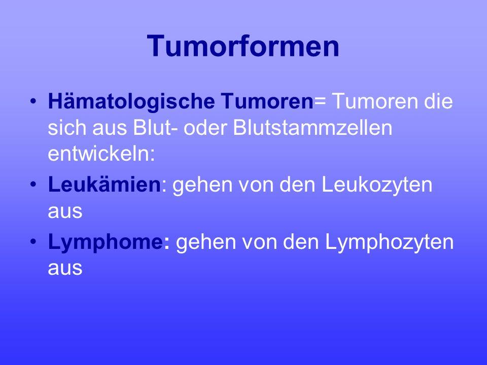 Tumorformen Hämatologische Tumoren= Tumoren die sich aus Blut- oder Blutstammzellen entwickeln: Leukämien: gehen von den Leukozyten aus Lymphome: gehe