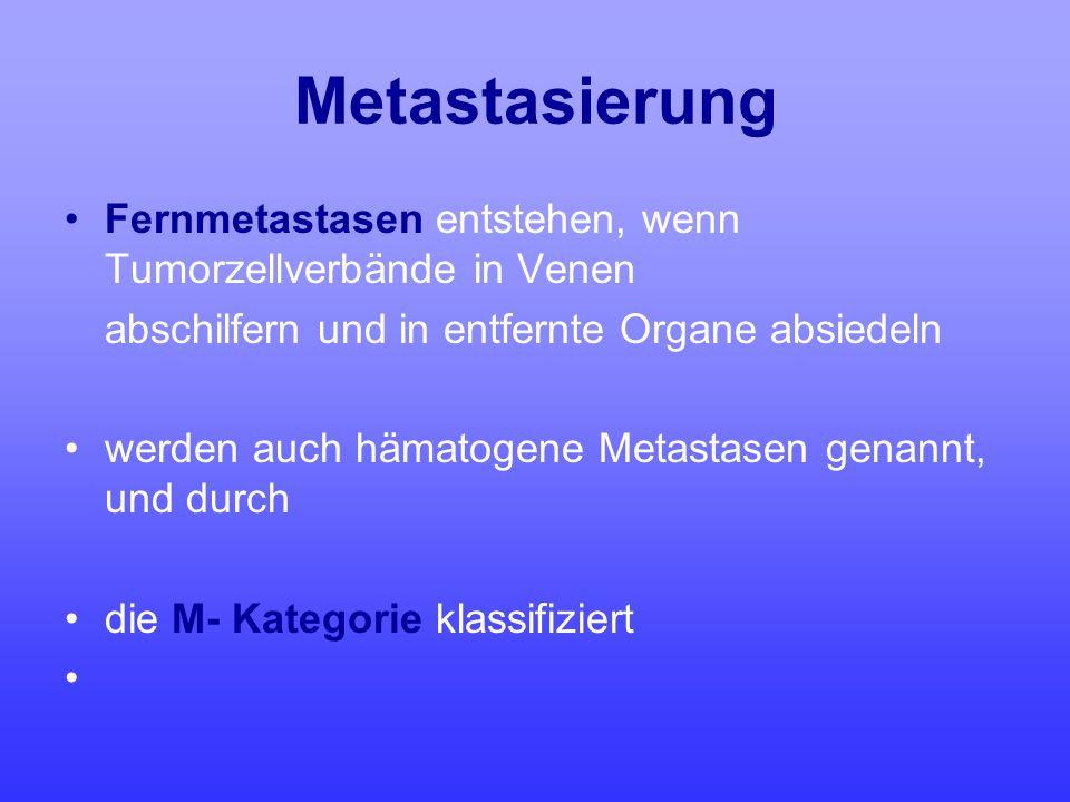 Metastasierung Fernmetastasen entstehen, wenn Tumorzellverbände in Venen abschilfern und in entfernte Organe absiedeln werden auch hämatogene Metastas