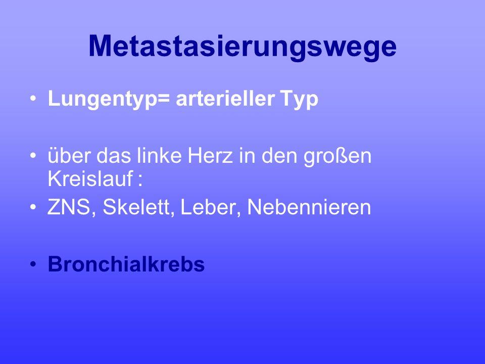 Metastasierungswege Lungentyp= arterieller Typ über das linke Herz in den großen Kreislauf : ZNS, Skelett, Leber, Nebennieren Bronchialkrebs