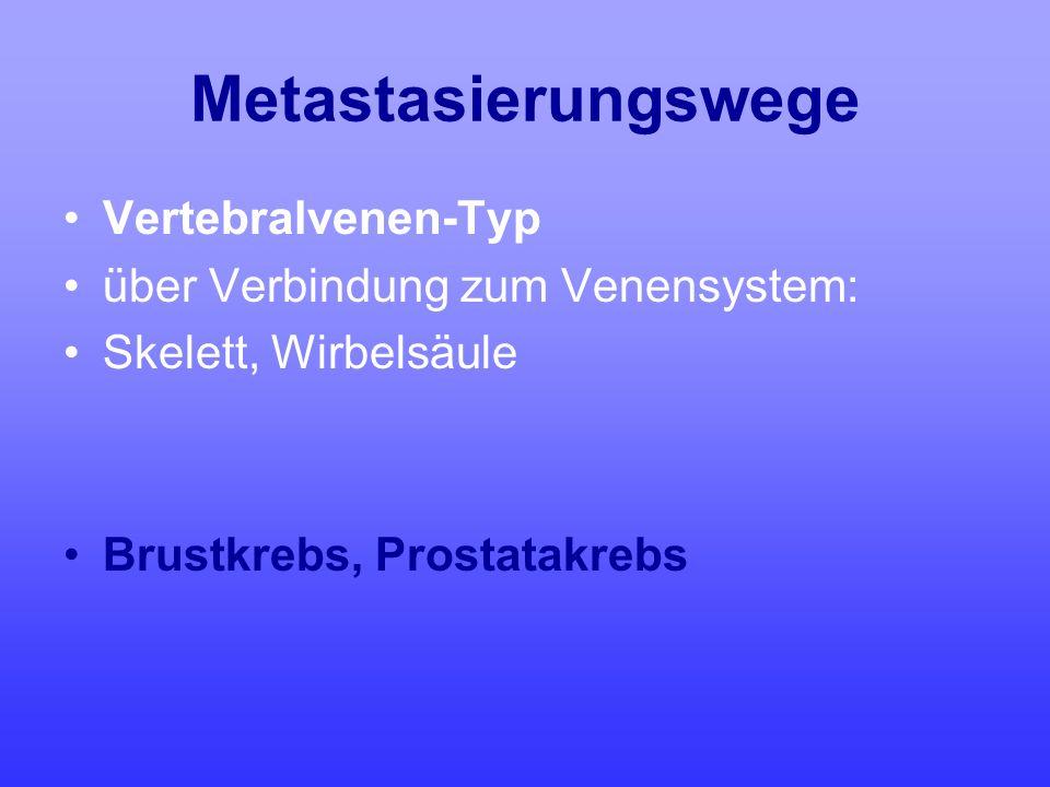 Metastasierungswege Vertebralvenen-Typ über Verbindung zum Venensystem: Skelett, Wirbelsäule Brustkrebs, Prostatakrebs