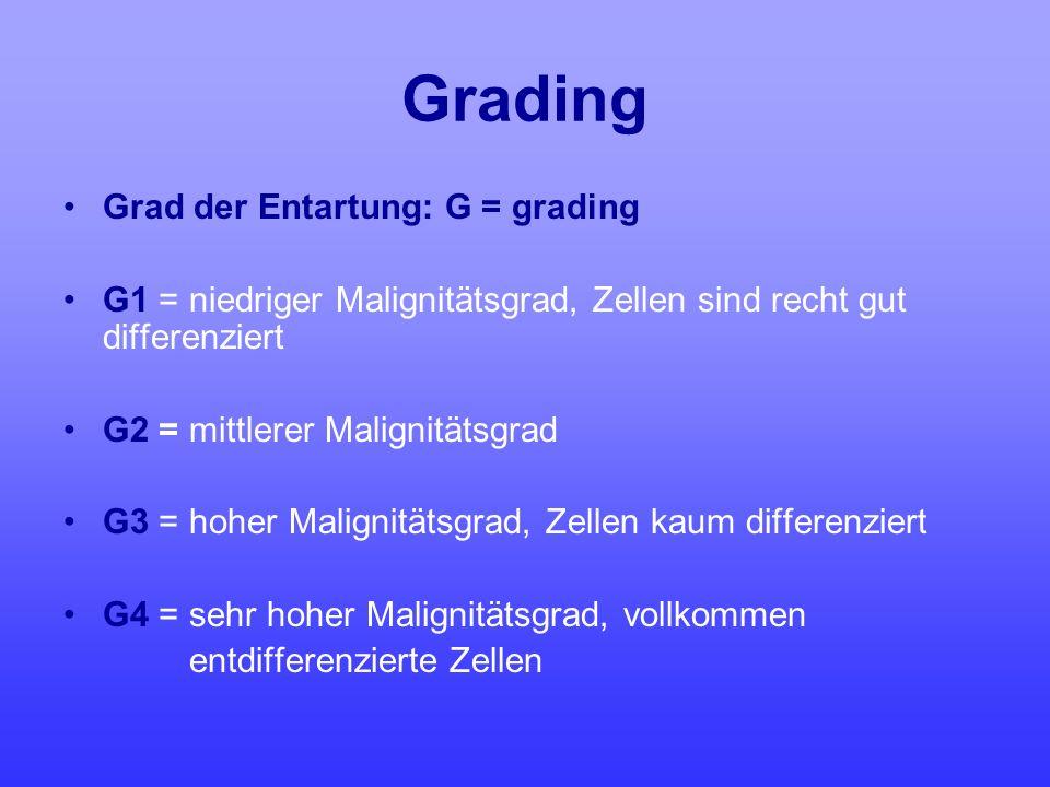 Grading Grad der Entartung: G = grading G1 = niedriger Malignitätsgrad, Zellen sind recht gut differenziert G2 = mittlerer Malignitätsgrad G3 = hoher