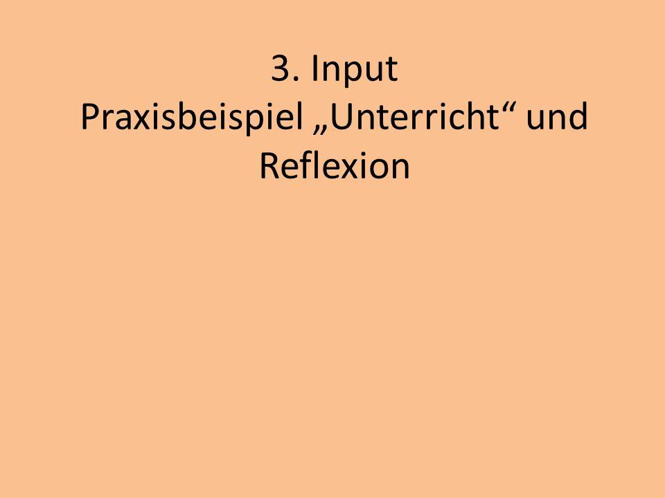 3. Input Praxisbeispiel Unterricht und Reflexion