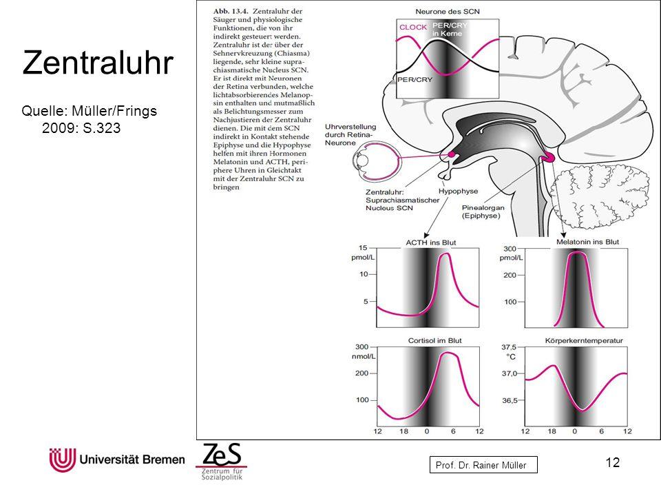 Prof. Dr. Rainer Müller Zentraluhr Quelle: Müller/Frings 2009: S.323 12