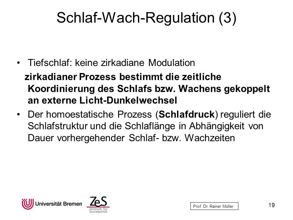 Prof. Dr. Rainer Müller Schlaf-Wach-Regulation (3) Tiefschlaf: keine zirkadiane Modulation zirkadianer Prozess bestimmt die zeitliche Koordinierung de