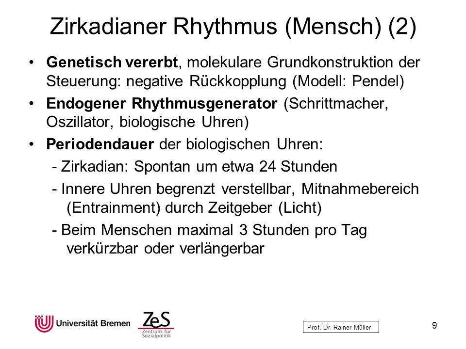 Prof. Dr. Rainer Müller Zirkadianer Rhythmus (Mensch) (2) Genetisch vererbt, molekulare Grundkonstruktion der Steuerung: negative Rückkopplung (Modell