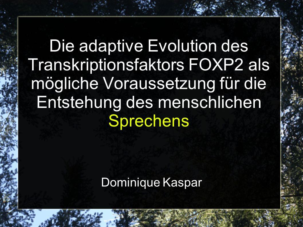 Die adaptive Evolution des Transkriptionsfaktors FOXP2 als mögliche Voraussetzung für die Entstehung des menschlichen Sprechens Dominique Kaspar