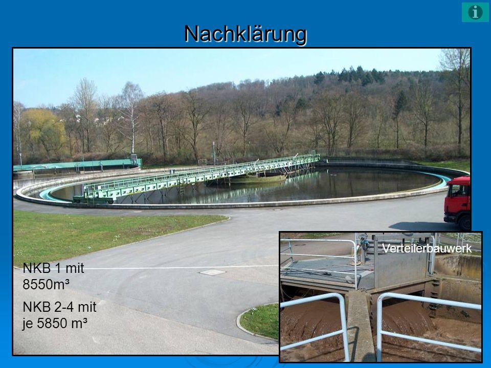 Nachklärung NKB 1 mit 8550m³ NKB 2-4 mit je 5850 m³ Verteilerbauwerk