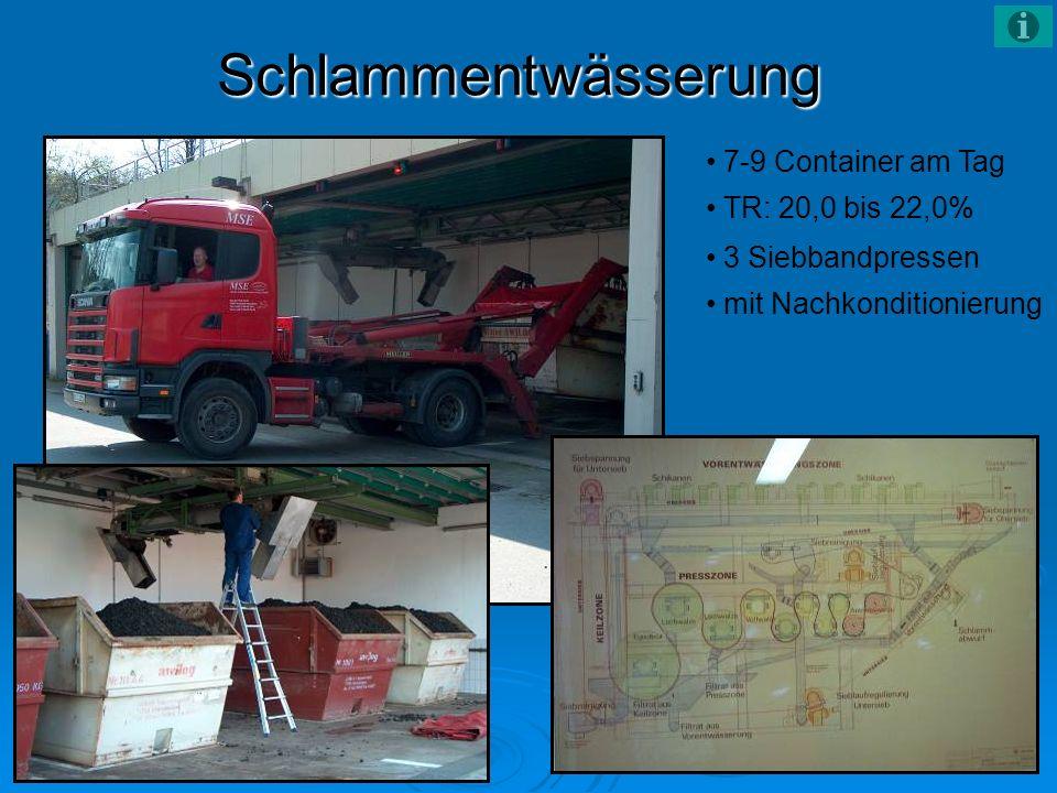 Schlammentwässerung 7-9 Container am Tag TR: 20,0 bis 22,0% 3 Siebbandpressen mit Nachkonditionierung