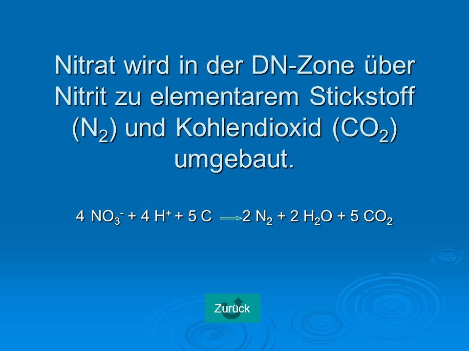 Nitrat wird in der DN-Zone über Nitrit zu elementarem Stickstoff (N 2 ) und Kohlendioxid (CO 2 ) umgebaut.