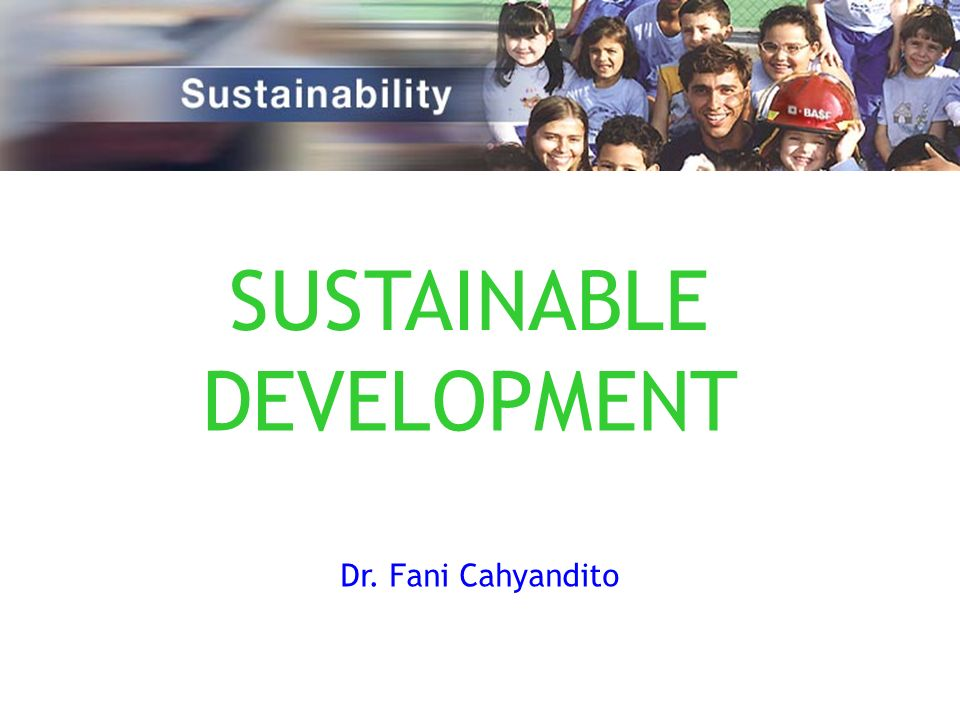 Some efforts have been made and regulations are being formulated to address the sustainable development, such as: 1.Ratification of many bilateral and multilateral environmental agreements 2.The Law No.