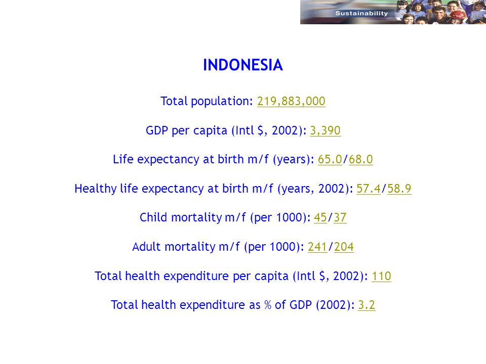 INDONESIA Total population: 219,883,000219,883,000 GDP per capita (Intl $, 2002): 3,3903,390 Life expectancy at birth m/f (years): 65.0/68.065.068.0 H