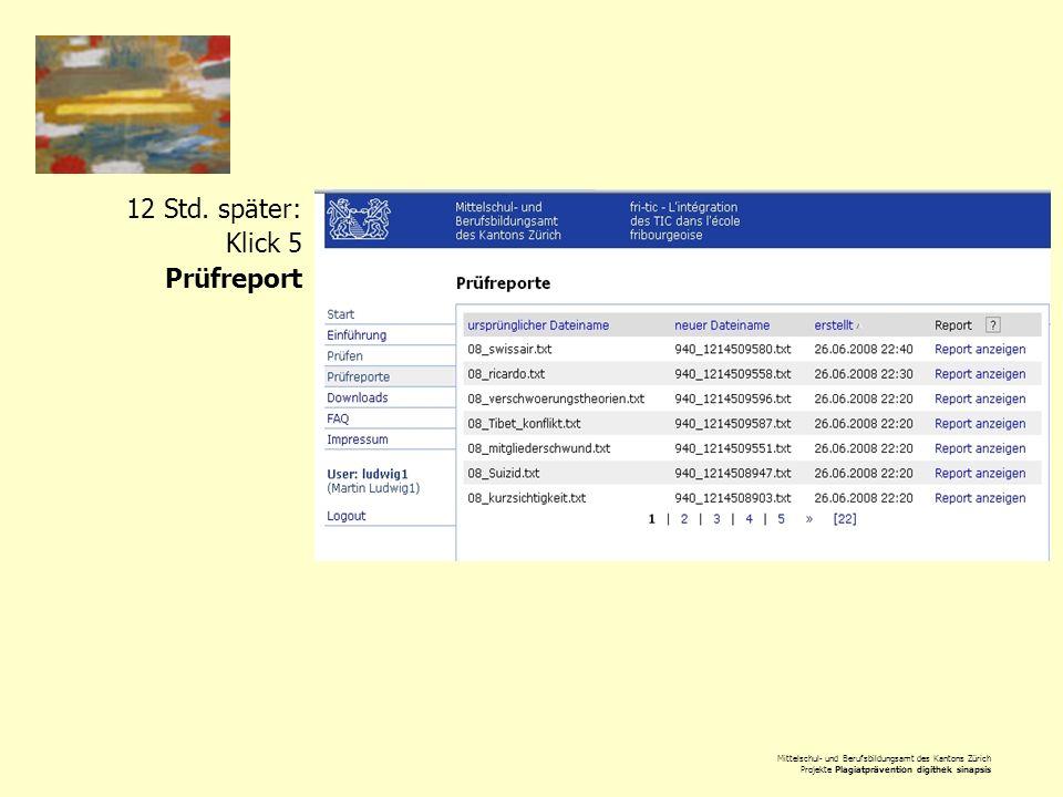 Mittelschul- und Berufsbildungsamt des Kantons Zürich Projekte Plagiatprävention digithek sinapsis 12 Std. später: Klick 5 Prüfreport