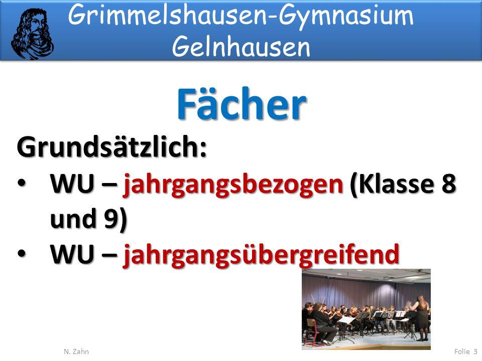 Grimmelshausen-Gymnasium Gelnhausen Fächer Folie 3N.