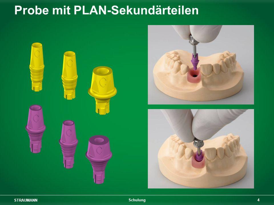 STRAUMANN 4 Schulung Probe mit PLAN-Sekundärteilen