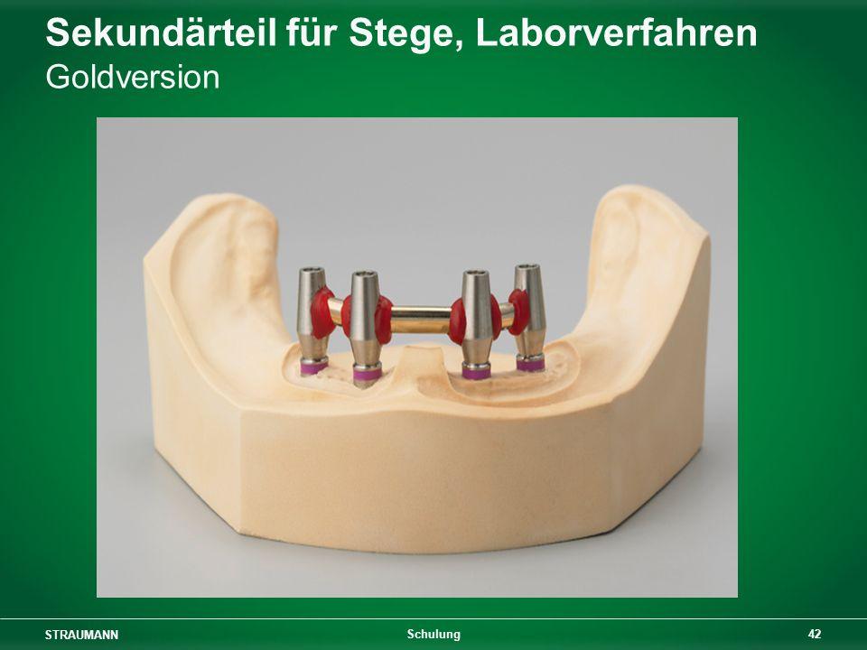 STRAUMANN 42 Schulung Sekundärteil für Stege, Laborverfahren Goldversion