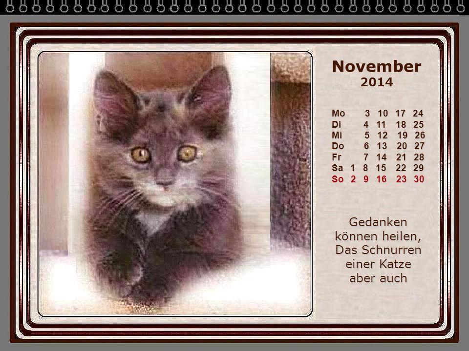 November 2014 Mo 3 10 17 24 Di 4 11 18 25 Mi 5 12 19 26 Do 6 13 20 27 Fr 7 14 21 28 Sa 1 8 15 22 29 So 2 9 16 23 30 Gedanken können heilen, Das Schnurren einer Katze aber auch