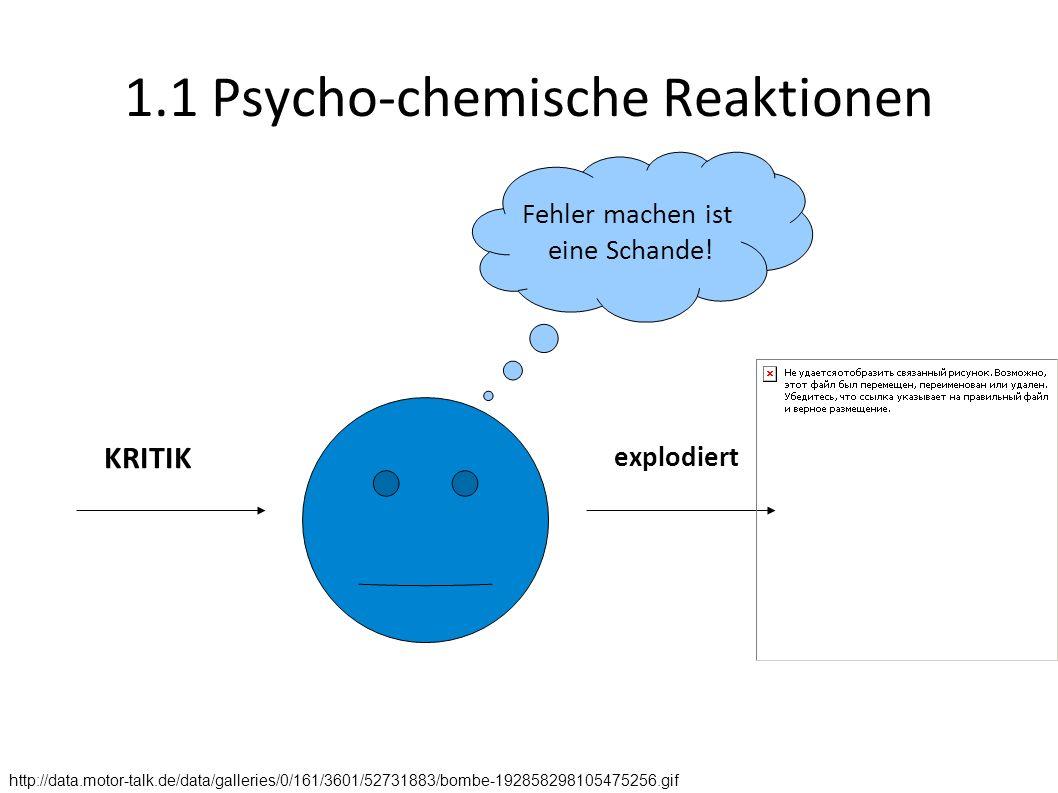 1.1 Psycho-chemische Reaktionen KRITIK Fehler machen ist eine Schande! explodiert http://data.motor-talk.de/data/galleries/0/161/3601/52731883/bombe-1
