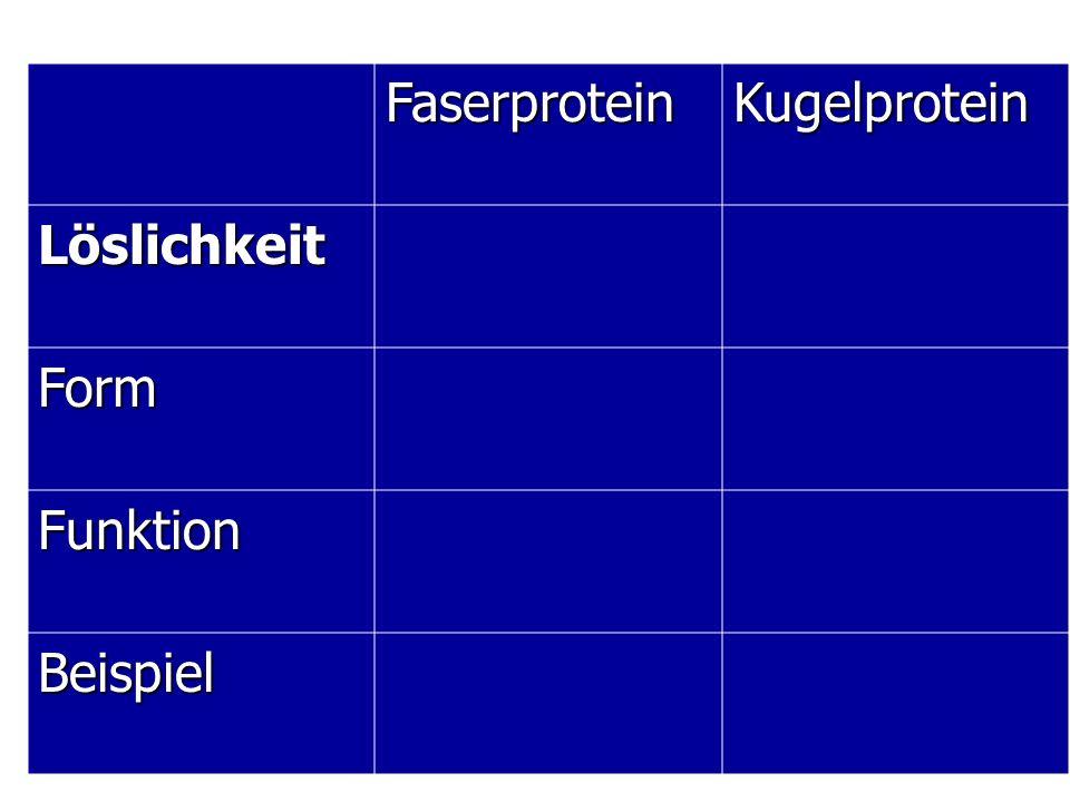 FaserproteinKugelprotein Löslichkeit Form Funktion Beispiel