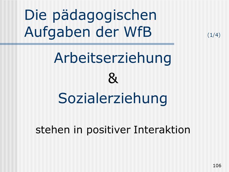 106 Die pädagogischen Aufgaben der WfB (1/4) Arbeitserziehung & Sozialerziehung stehen in positiver Interaktion