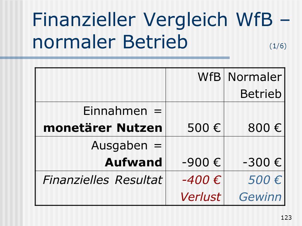 123 Finanzieller Vergleich WfB – normaler Betrieb (1/6) WfBNormaler Betrieb Einnahmen = monetärer Nutzen500 800 Ausgaben = Aufwand-900 -300 Finanziell