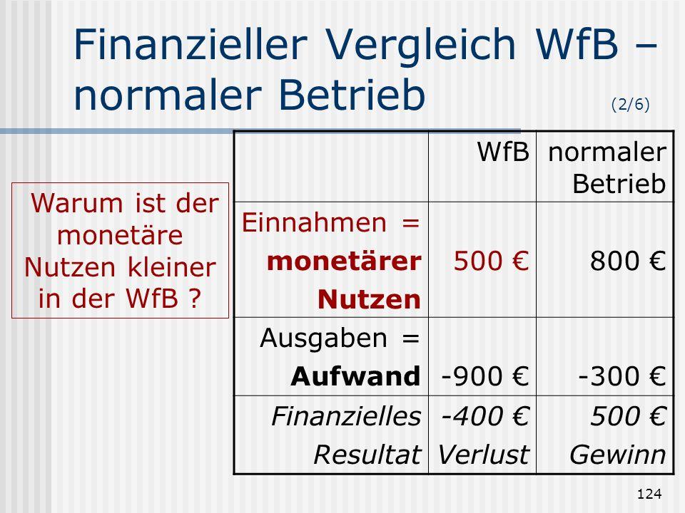 124 Finanzieller Vergleich WfB – normaler Betrieb (2/6) WfBnormaler Betrieb Einnahmen = monetärer Nutzen 500 800 Ausgaben = Aufwand-900 -300 Finanziel