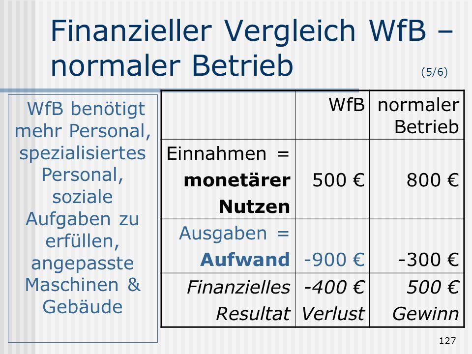 127 Finanzieller Vergleich WfB – normaler Betrieb (5/6) WfBnormaler Betrieb Einnahmen = monetärer Nutzen 500 800 Ausgaben = Aufwand-900 -300 Finanziel