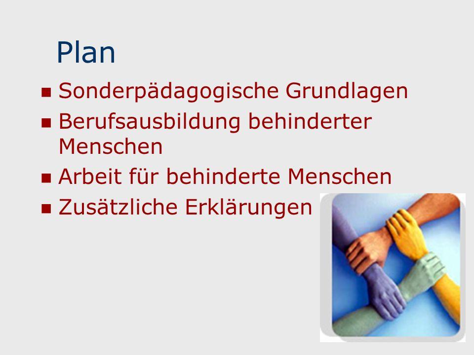 Sonderpädagogische Grundlagen Berufsausbildung behinderter Menschen Arbeit für behinderte Menschen Zusätzliche Erklärungen Plan