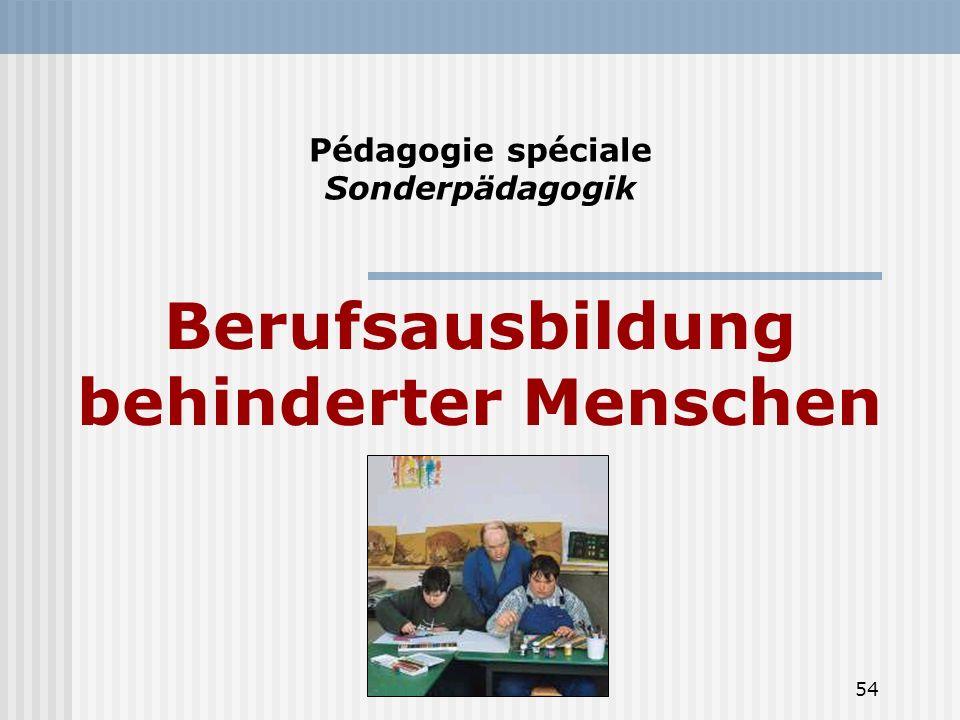 54 Pédagogie spéciale Sonderpädagogik Berufsausbildung behinderter Menschen