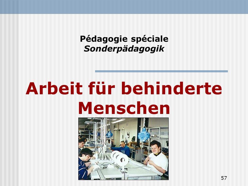 57 Pédagogie spéciale Sonderpädagogik Arbeit für behinderte Menschen