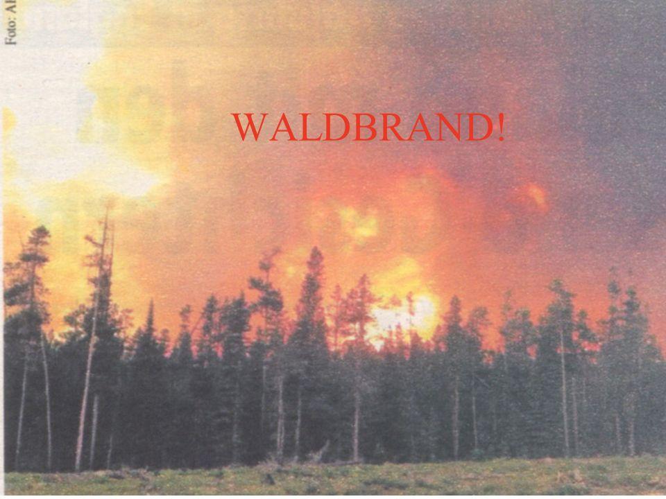 WALDBRAND!
