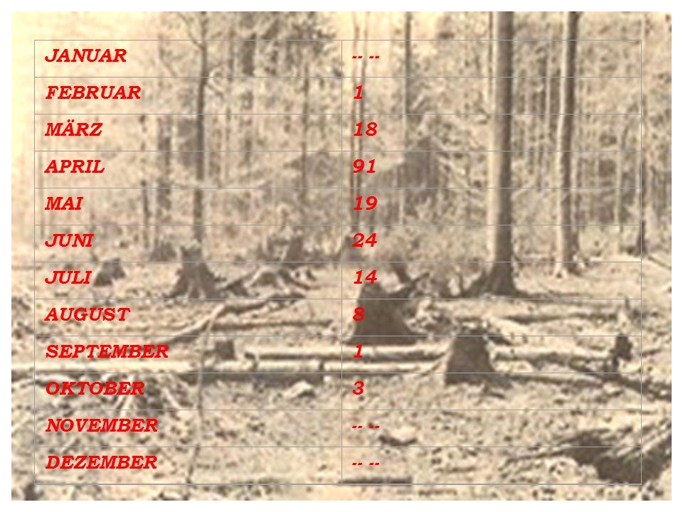 1) Der Hochwald: *) Feuer breitet sich über die Kronen aus.