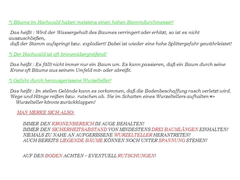 2) Der Jung- bzw.Niederwald: *) Niederwald ist meistens sehr dicht.