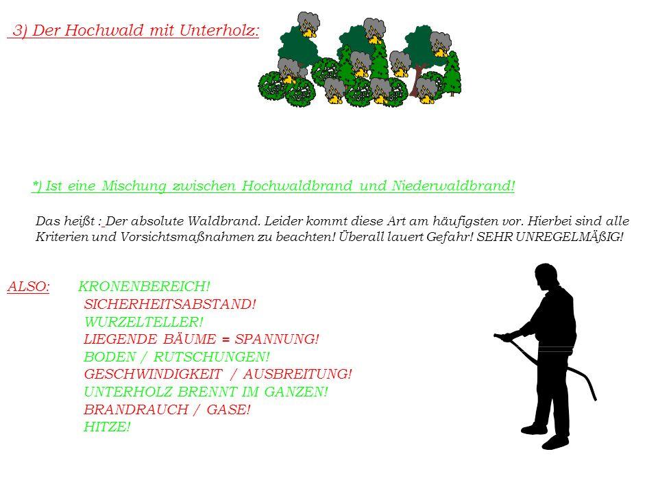 *) Ist eine Mischung zwischen Hochwaldbrand und Niederwaldbrand.