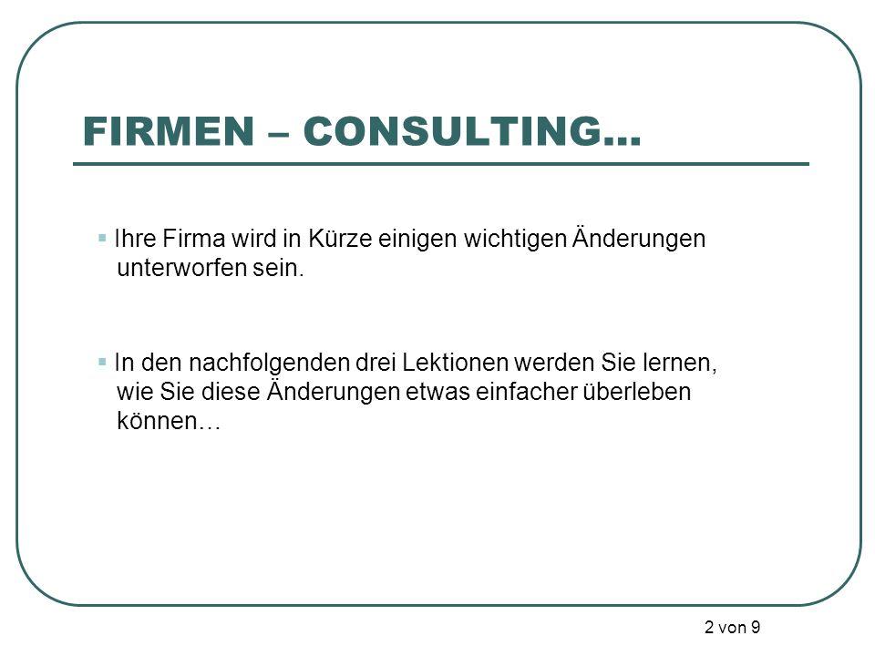 Firmen Consulting 3 (lebens)wichtige Lektionen